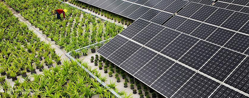Finanziamenti ristrutturazione sostenibile, finanziamenti riqualificazione energetica - Banca Popolare del Frusinate